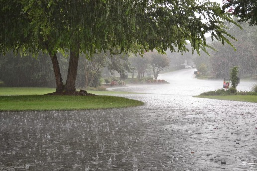 rain-05