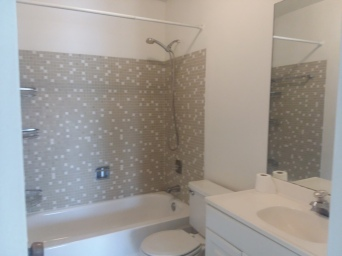 3 Guest Bathroom