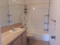 4 Master Bathroom